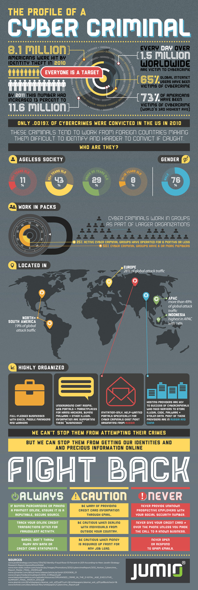 Cyber Criminal Infographic